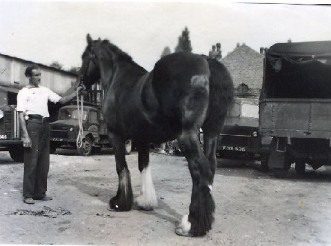 The last man employed by Fleetwood's to drive horses, and the picture was taken in the late 50s. His job was to cart materials to R.J.Hunt Ltd.